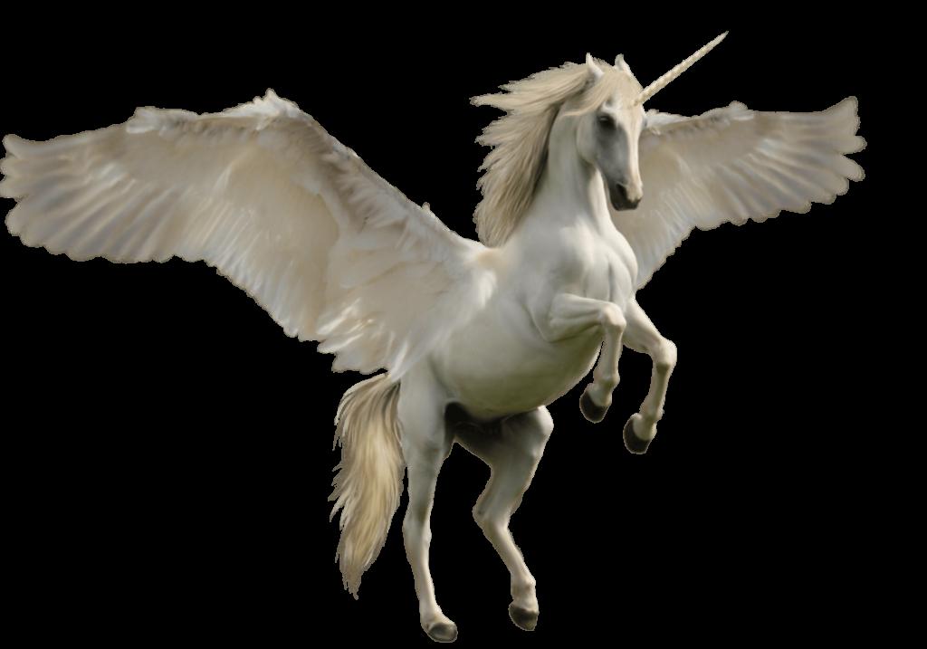 Einhorn mit Flügeln