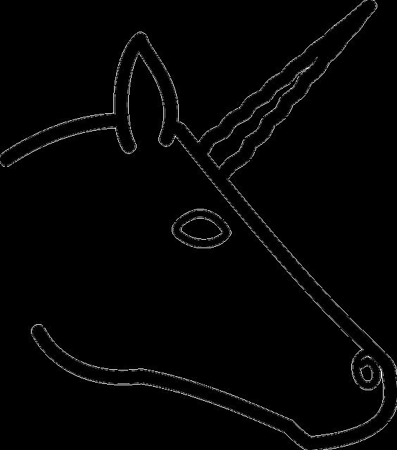 einhorn kopf zeichnen