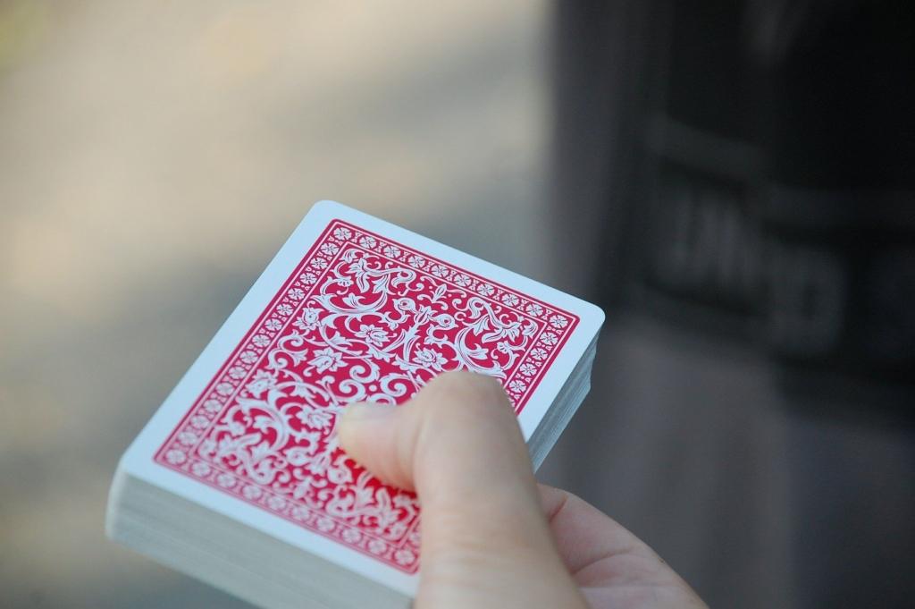 lama kartenspiel